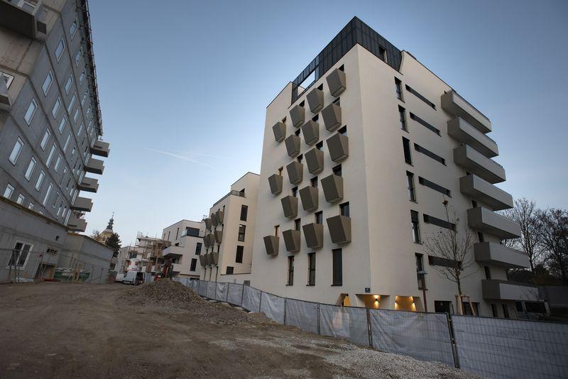Baustellenfuehrung_Biotope_City__c__IBA_Wien-A.Ackerl_53.jpg