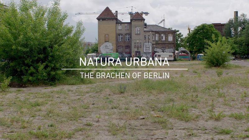 Natura_Urbana__c__Natura_Urbana.jpg