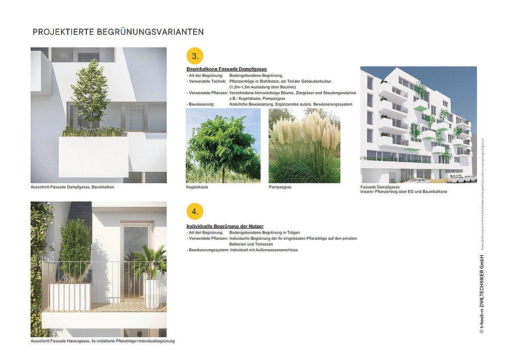 G_mischter_Block_Begruenungskonzept_2020_3.jpg