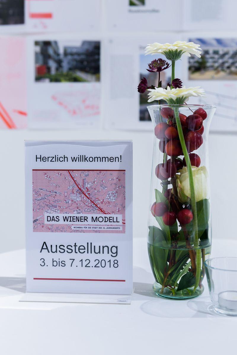 DasWienerModell_Ausstellung_17.jpg